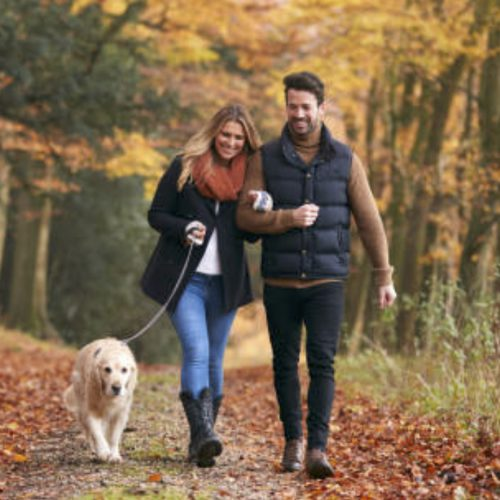 Get out and walk in nature. Good motivational advice from Biddenden Chiropractic.