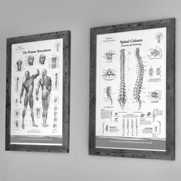 The treatment rooms at Biddenden Chiropractic. We offer a range of treatments for back, shoulder, knee and neck pain.