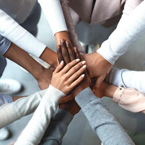 All hands together, we're hiring at Biddenden Chiropractic.